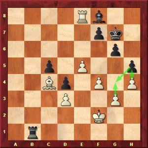 carlsen-karjakin-oyun-2